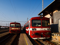 The ŽSSK 812 050-3 and the 812 033-9 seen at Levice