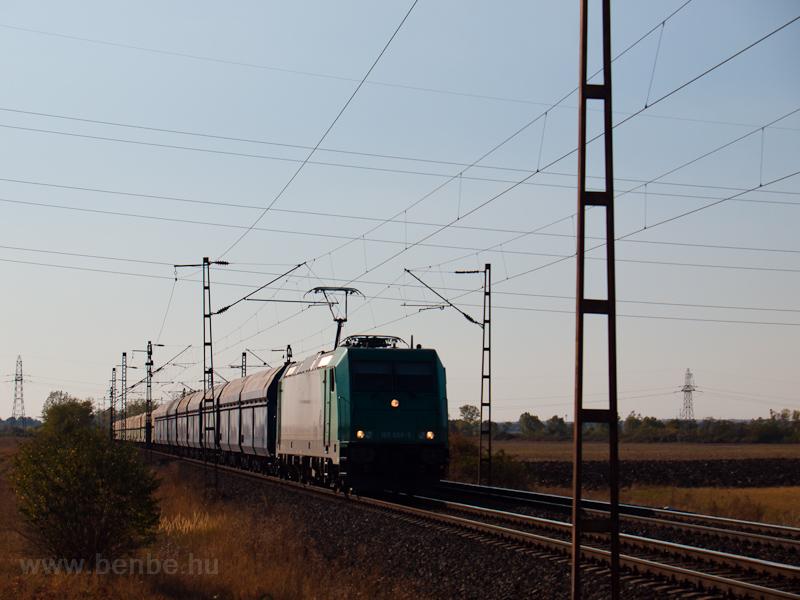 A 185 609-5 tehervonattal Nagyúton fotó