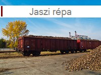 Sugar beet from J�szap�ti
