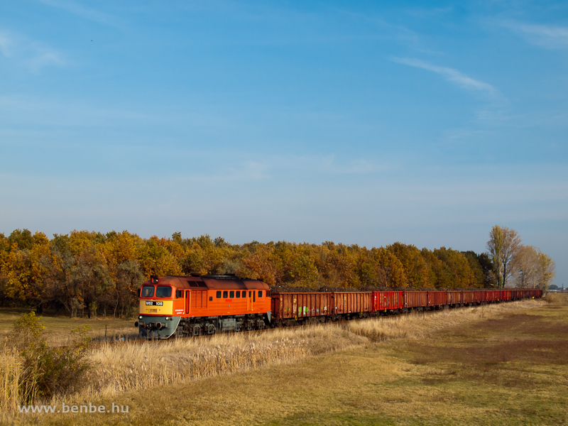 The M62 108 hauling a freight train full with sugar beet between Jászapáti and Jászdózsa photo