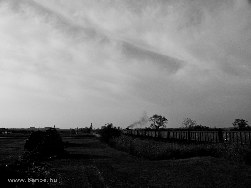M62 108 cukorrépavonattal Jászapáti és Jászdózsa között fotó