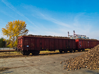 Sugar beet train at J�szap�ti