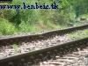 Track near Süttõ