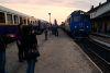 Girls gone wild - még a lányok is vonatot fotóznak