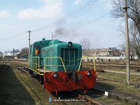 THK2-8611 Nagysz&#337;l&#337;sn