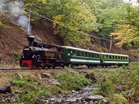 The Mátravasút 490 2005 seen between Lajosháza and Karoshíd