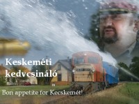 The Kecskem�t narrow gauge railway