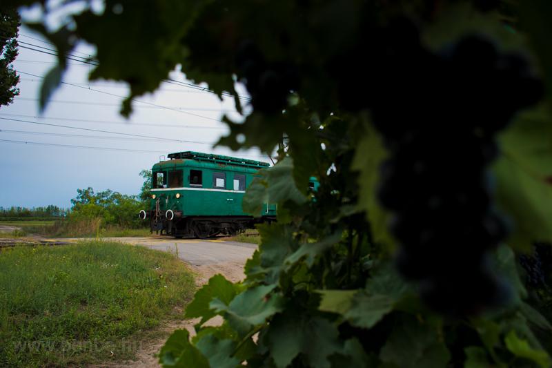 A MÁV-HÉV LVII 90 Szigetszentmárton-Szigetújfalu és Egyetemi tangazdaság között fotó