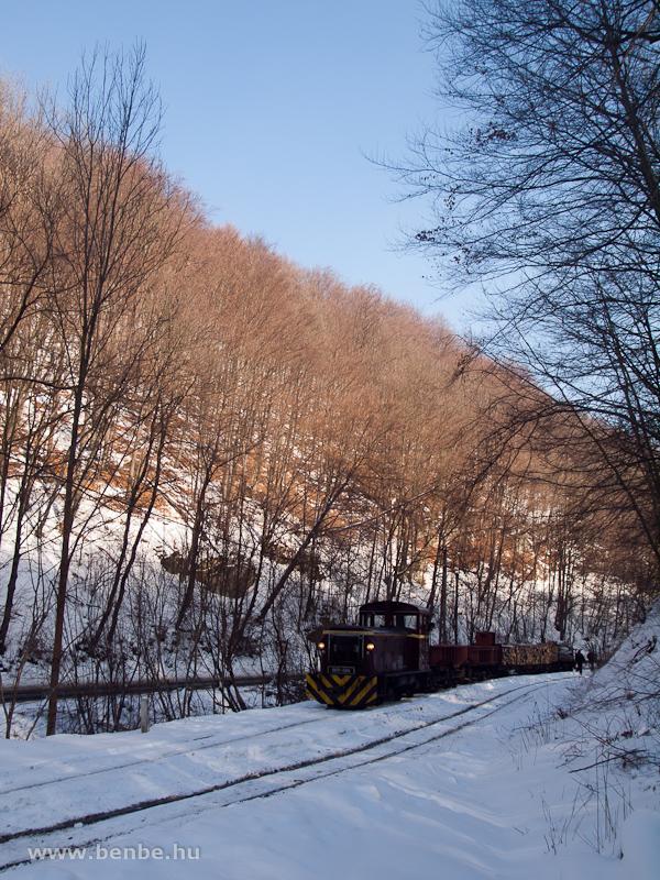 A LÁEV D02-508 tehervonata Fazola-kohó állomáson fotó