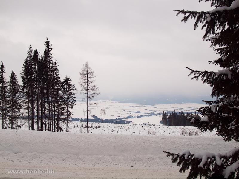 Kilátás a letarolt hegyoldalra a főút mellől Csorbató közelében fotó