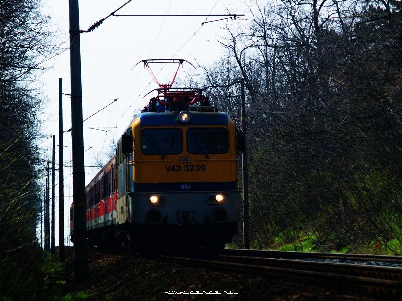 V43 3239 Martonvásárnál fotó