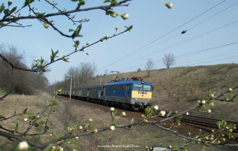 V43 1177 Baracskánál fotó