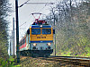 The V43 3239 near Martonvásár