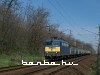 V43 1181 Martonv�s�rn�l