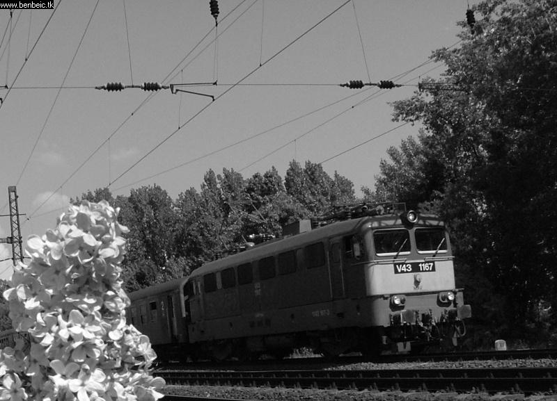 V43 1167 Budafoknál fotó