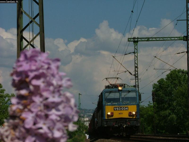 V63 034 Budafoknál fotó