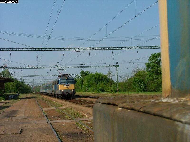 V43 1177 Martonvásáron fotó