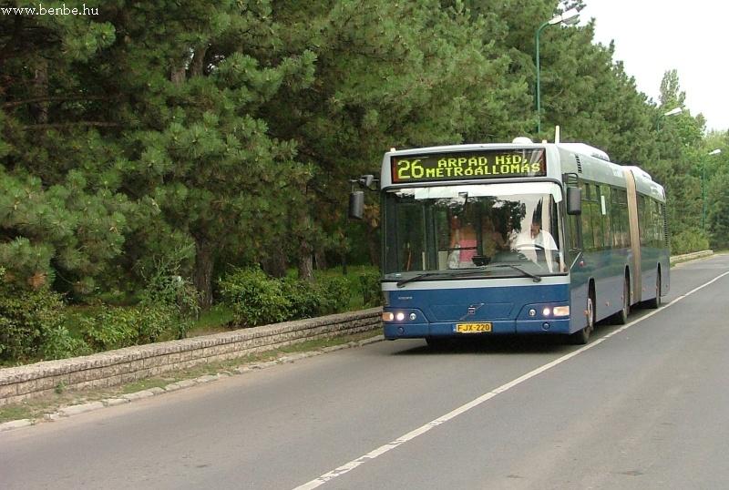 A Margit-sziget fenyõfái elõtt halad el a 26-os busz Volvo csuklóssal fotó