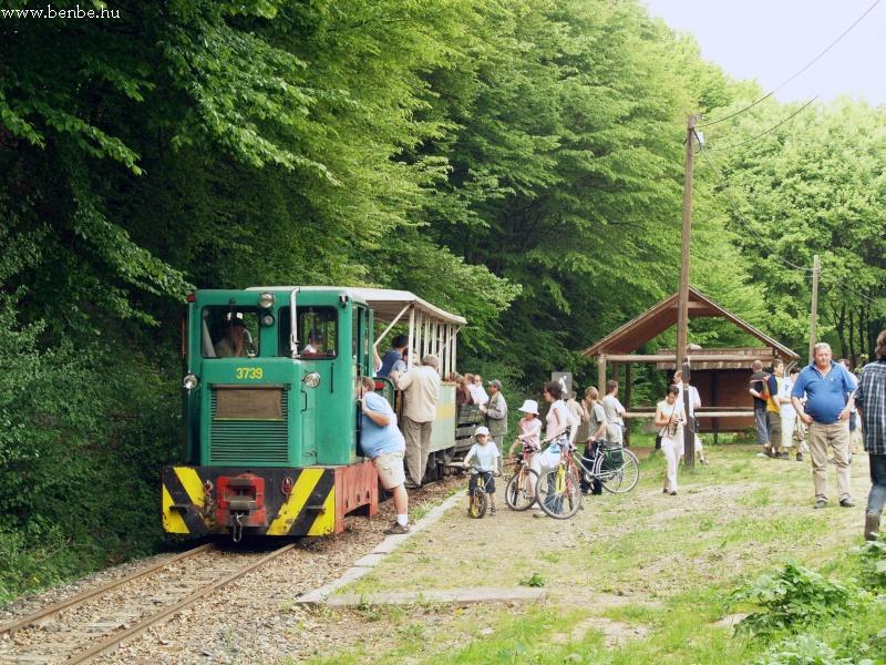 Kis vonat másfél kocsival de sok érdeklõdõvel (Nagybörzsönyi Állami Erdei Vasút) fotó