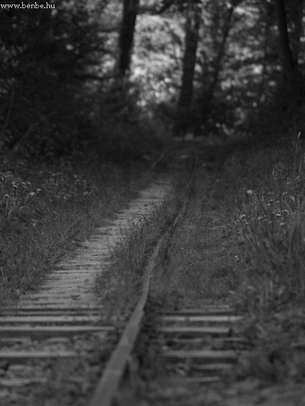 A vasúti átjárókat kicsrélték 34-es sínekre, de a pálya maradéka kilences felépítményû maradt fotó