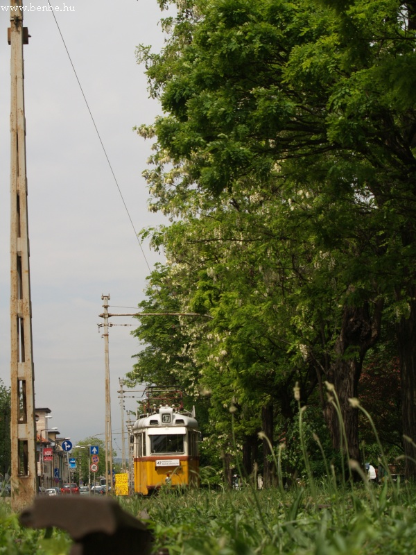 Rövid 47-es vonali UV szerelvény a budafoki végállomáson fotó