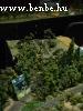 Ez a lepsényi vicinális, felette a régi vasút hídjával