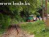 The forest railway begins with a little bend then it enters the deep forest