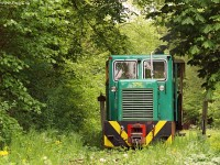 It's only the first metre of track but still it's like if the little train would emerge from the deepest of the forest