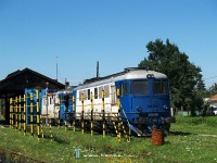 The 60 1165-4 at Sighetu Marmatiei depot