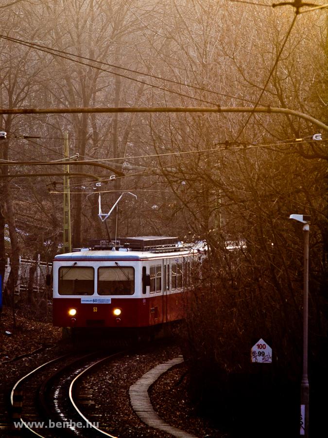 A budapesti fogas a Gyöngyvirág út és az Erdei iskola között fotó