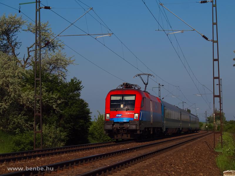 Az RCH matricás, de ÖBB üzemeltetésű 1116 017-3 a Kálmán Imre EuroNighttal Biatorbágynál fotó
