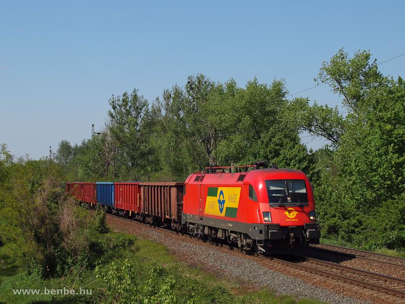 A GYSEV 1116 064-5 egy tehervonattal Vértesszőlős és Tatabánya között fotó