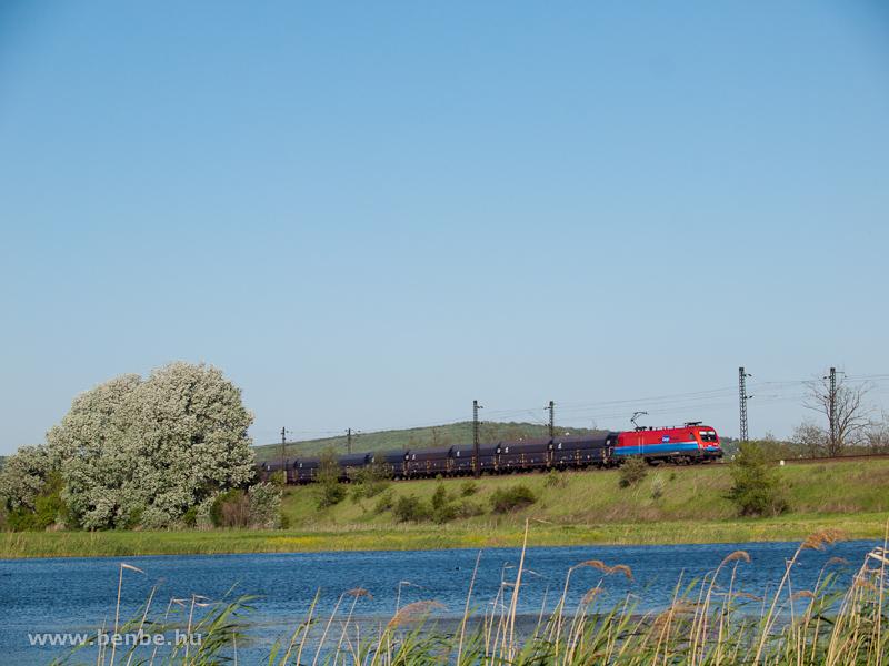 RailCargoHungaria 1116-os egy üres önürítős kocsikból álló vonattal Herceghalom és Bicske között fotó