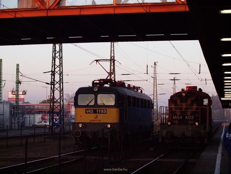 V43 1193 és M44 403 Kőbánya-Kispest állomás gyalogos felüljárója alatt - a Szili majd később kap feladatot, a Bobó máris indul Kispestre, a 142-es vonalra, ahol ő lesz a tartalék fotó