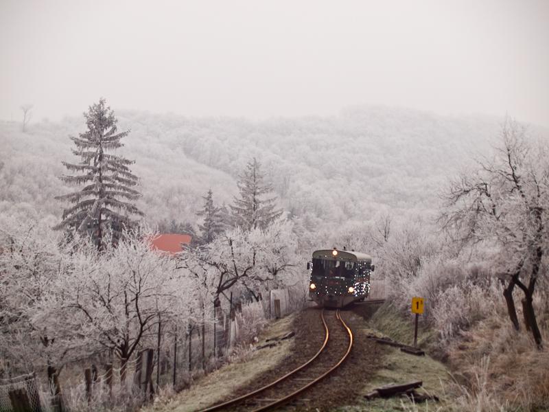 Toby is seen near Szokolya-Mányoki photo