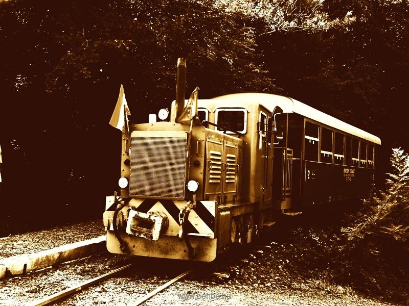 A Szobi GV (vagy, hivatalosan) Börzsöny Kisvasút D04-601 pályaszámú mozdonya Máriakút megállóhelyen fotó
