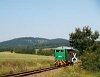 A Szobi GV (vagy, hivatalosan) Börzsöny Kisvasút D04-601 pályaszámú mozdonya Márianosztra állomáson