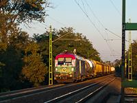 A GYSEV 1047 505-1 <q>Széchenyi-emlékmozdony</q> Budaörs és Törökbálint között a naplemente selymes fényeiben egy tehervonattal