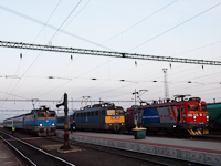 The V43 1068 and 1141 303 and 010 at Gyékényes