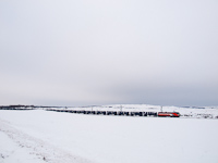 The 91 83 0 480 002-1 MVV Trans Montana near �sk�