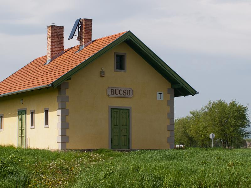 Bucsu photo