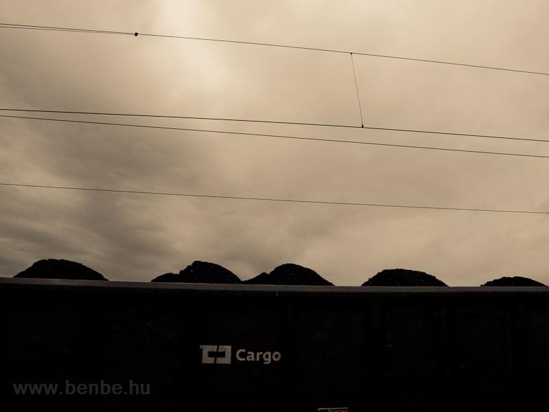 Coal photo