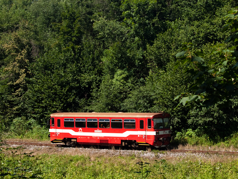 The 812 005-7 between Tisov photo