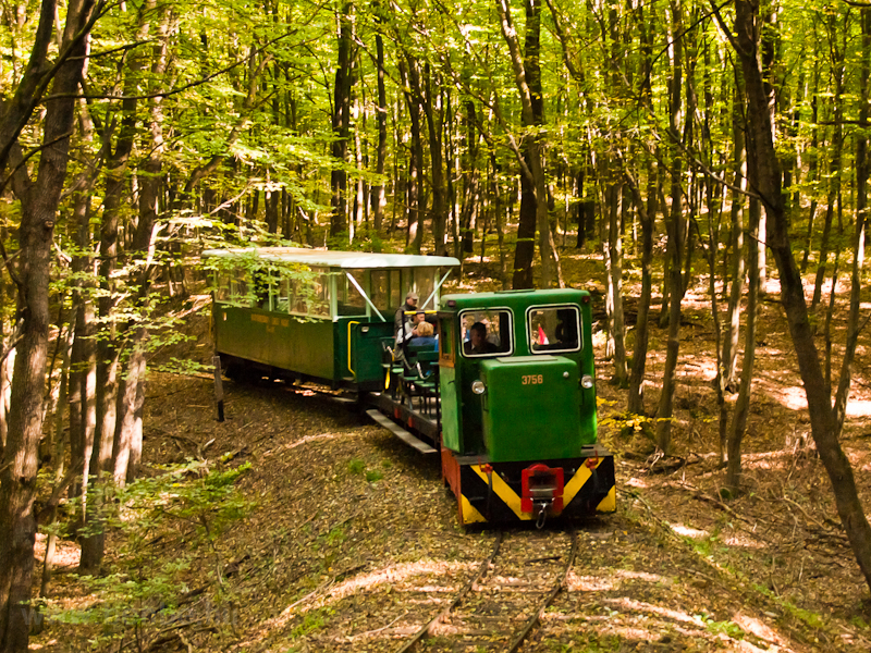 The Nagybörzsöny Forest Railway photo