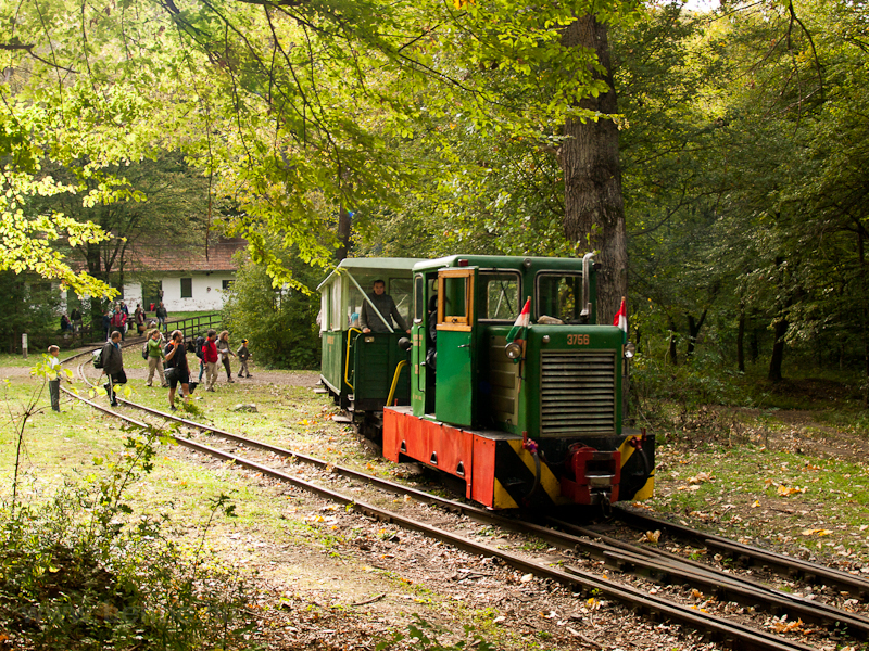 The Nagybörzsöny Forest Rai picture