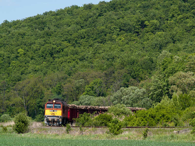 The MÁV-TR M62 228 is hauling a loaded lumber train between Püspökhatvan and Acsa-Erdőkürt photo
