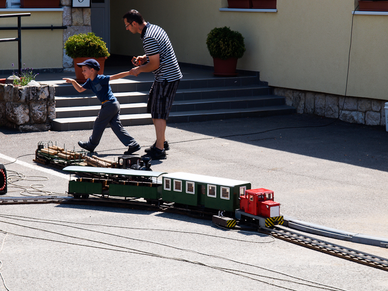 Garden railway sized models photo