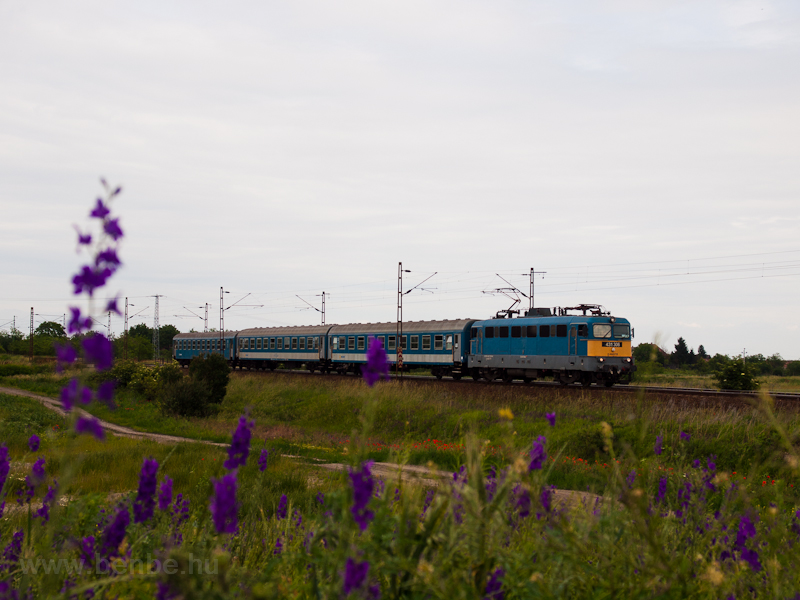 The 431 306 seen near Sziha photo