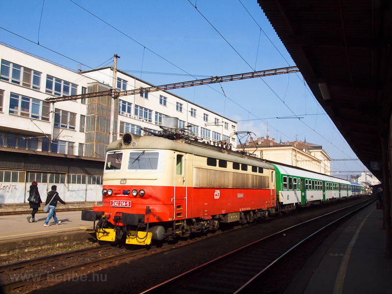 The old livery ČD 242  photo