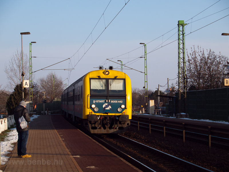 The 8005 442 seen at Vecsés photo